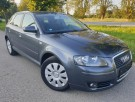 Audi A3 1.9TDi 77kW Attraction 06.07`
